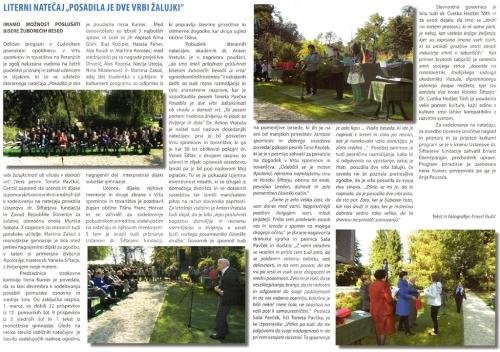 novine_2013_12