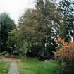 vrt-razvoj-od-60-naprej-13
