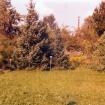 vrt-razvoj-od-60-naprej
