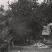 siftarjeva-domacija-dvorisce-del-sedanjega-vrta-3